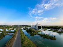 秋日的泗洪洪泽湖湿地 / 摄影 张连华 张笑