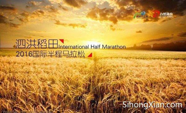 """泗洪将于10月23日举办""""稻田马拉松""""赛事"""