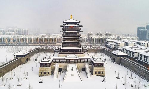 2018年的泗洪雪景图片 张连华先生的开年大作